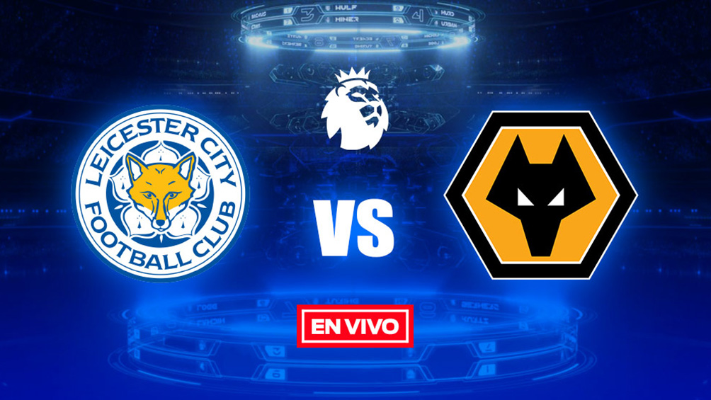 wolves vs leicester city - photo #29
