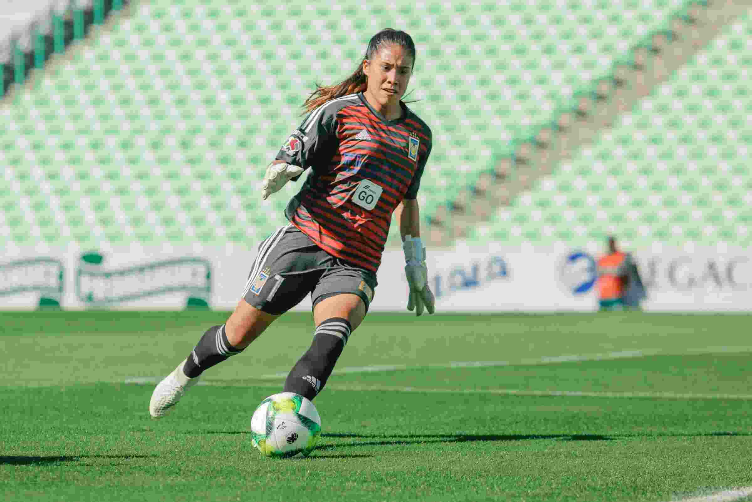 David Faitelson revienta a Giovani dos Santos tras victoria en eLiga MX