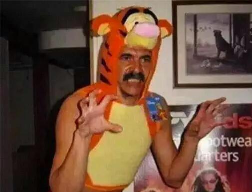 image_content_galeria_full_14175213_20150805221240 ríete con los memes de la derrota de tigres en libertadores rÉcord,Memes Tigres