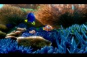 Embedded thumbnail for Revelan último trailer de 'Finding Dory'