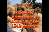 Embedded thumbnail for Mujer se reencuentra con dos leonas y conmueve en redes