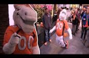 Embedded thumbnail for Mascota de Broncos afirma que Manning se retira si es Campeón