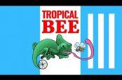 Embedded thumbnail for Ciclistas sufren 'feroz' ataque de abejas