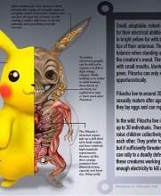 Los ganglios eléctricos son los principales atributos de Pikachu