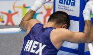 Joselito, en una pelea en los Panamericanos 2015