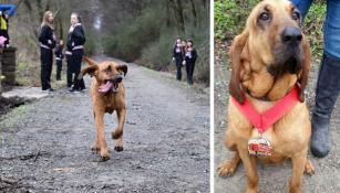 Así premiaron a Ludivine, la carismática mascota del maratón