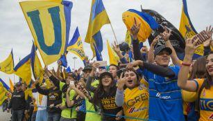 Afición de Tigres durante el desfile para celebrar campeonato