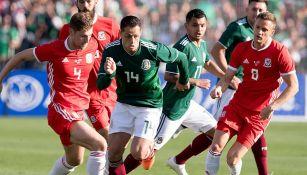Chicharito, durante el encuentro del Tri contra Gales