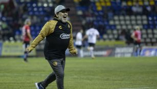 Maradona festeja en partido de Dorados