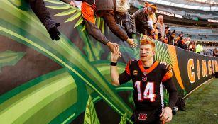 Dalton festeja con los fans el primer triunfo de Bengals