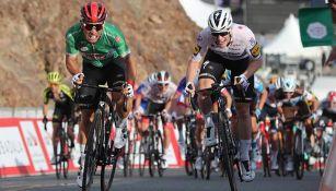 Ciclistas, durante el Tour de Emiratos Árabes