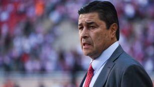 Luis Fernando Tena en partido de Chivas