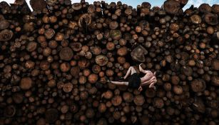 'Pila de troncos Boulder' ganó el World Press Photo