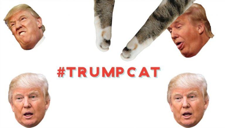 Donald Trump, un capullo en la Casa Blanca - Página 4 20170322210406