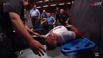 Shane McMahon, tras aventarse de lo más alto de la jaula