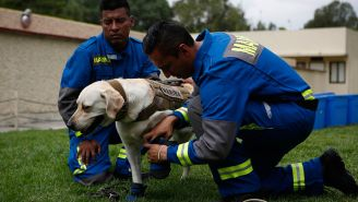 Hombres ayudan a Frida a ponerse sus protecciones