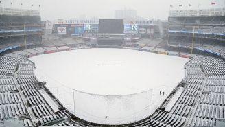 Así lució el Yankee Stadium tras la nevada