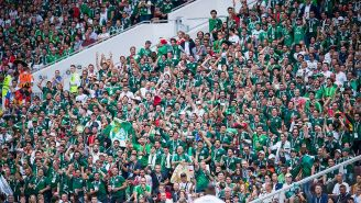 Aficionados de México gritan durante el partido contra Alemania