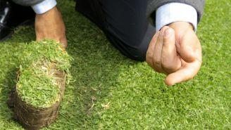 El pasto que estaba colocado en el Estadio Azteca
