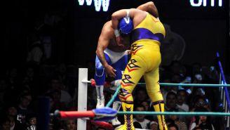 Villano V y Blue Panther luchan en la Arena México