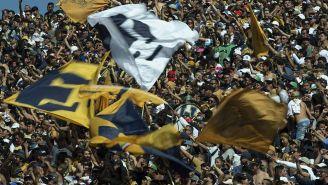 Aficionados de Pumas apoyan en CU