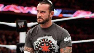 CM Punk en un show de WWE