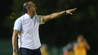 Raúl Gutiérrez como técnico de Potros UAEM