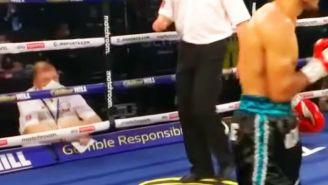 Terry O'Connor en pelea entre Vázquez y Ritson