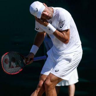 Steve Johnson es atacado por las hormigas en Wimbledon