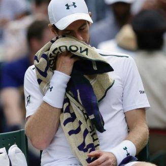Andy Murray se lamenta durante el juego contra Querrey