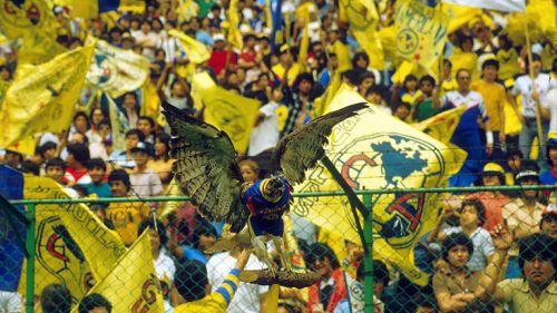 Águila en las tribunas del Estadio Azteca