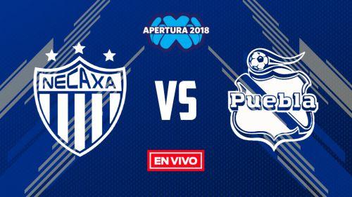 Necaxa reacciona y empata con Puebla a dos goles