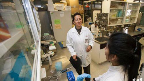 Científica del IPN
