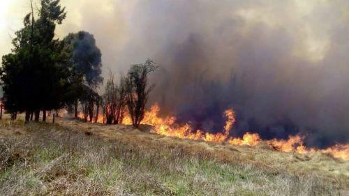 Panorámica del incendio en Parque Ecológico de Xochimilco