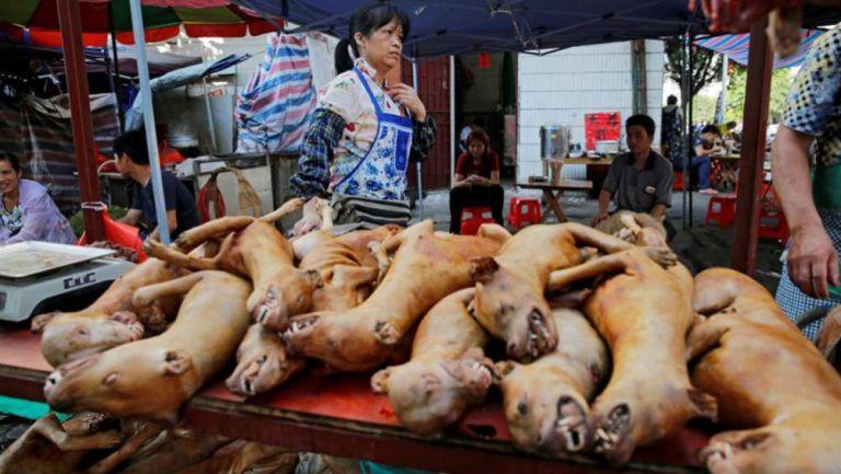 Venta de perros para consumo