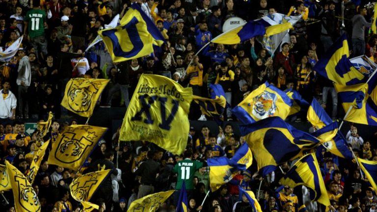 Libres y Lokos durante un partido de Tigres