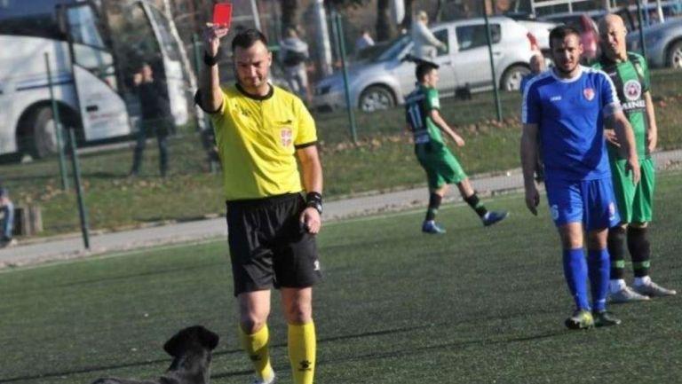 Árbitro en Serbia expulsando a un perro