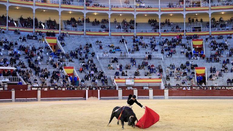 Corridas de toro con público reanudaron en Madrid