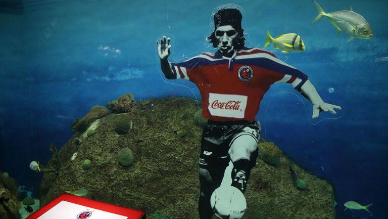 Una placa a Jorge Comas en el acuario de Veracruz